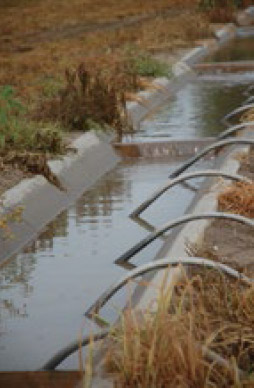 One Irrigator's Waste is Another's Supply