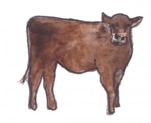 cow - Carnivores, Not Condos