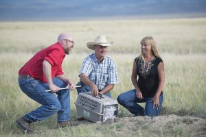 Game and Fish biologist and two ranchers release ferret