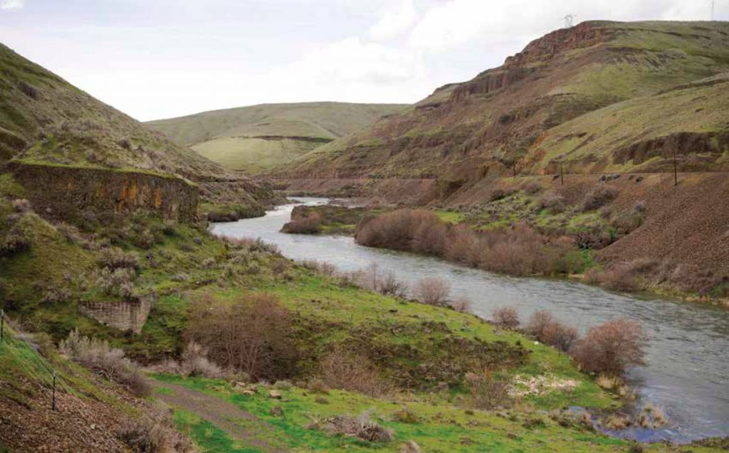 Photo of the Deschutes River flowing through a verdant gorge in Oregon