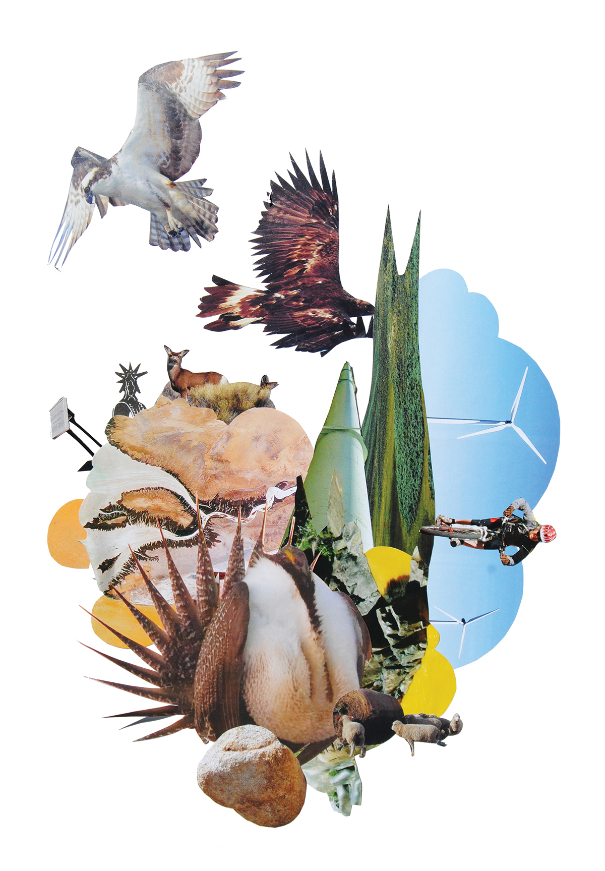 Animal collage with birds, sagegrouse, biker, windmills, and ungulates